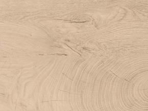 E31 Hirnholz Asteiche